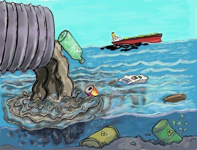 تأثير التلوث على الكائنات البحرية