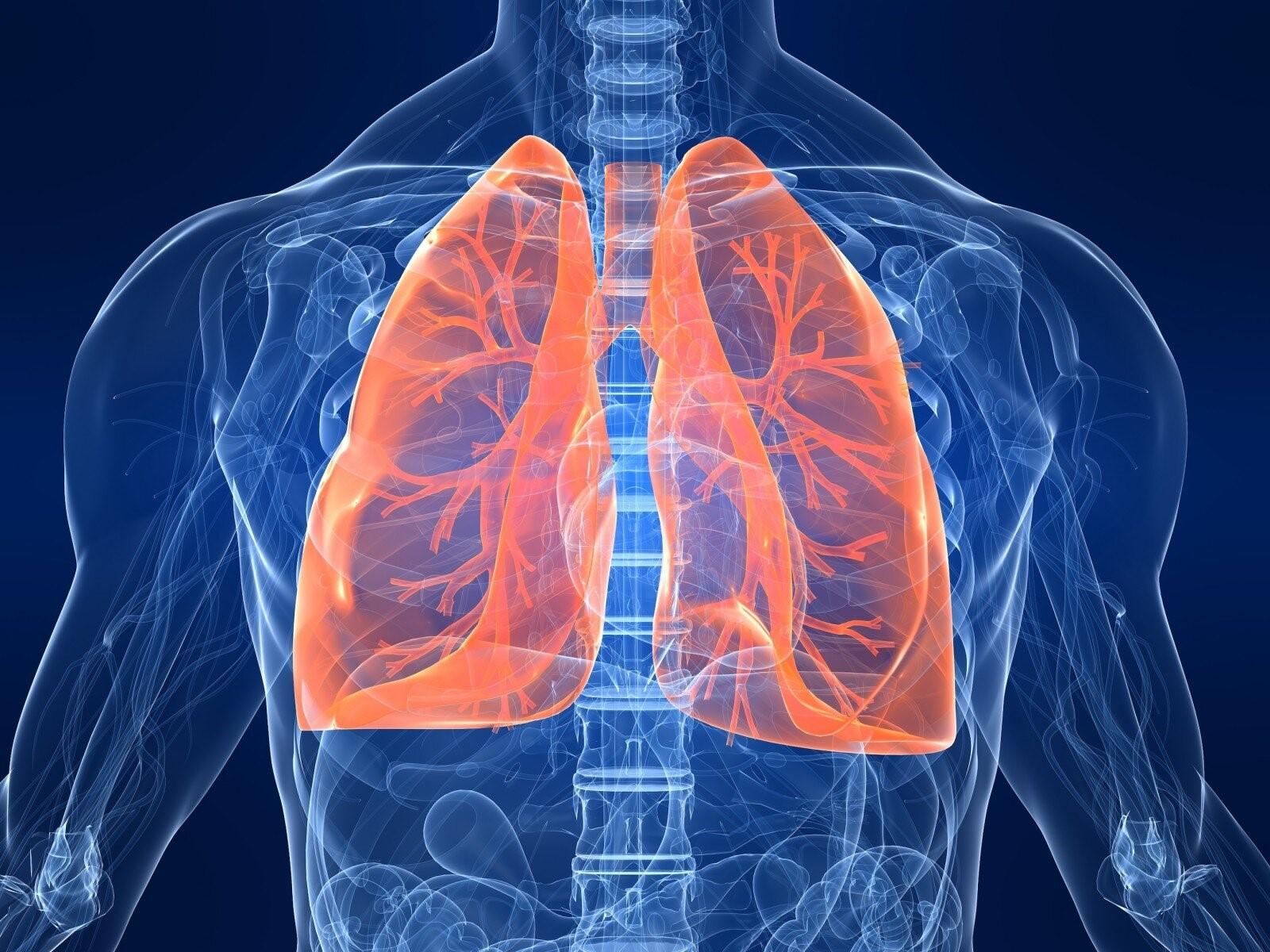 إيقاف تلف الرئة المميت من الانفلونزا ببروتين بشري طبيعي