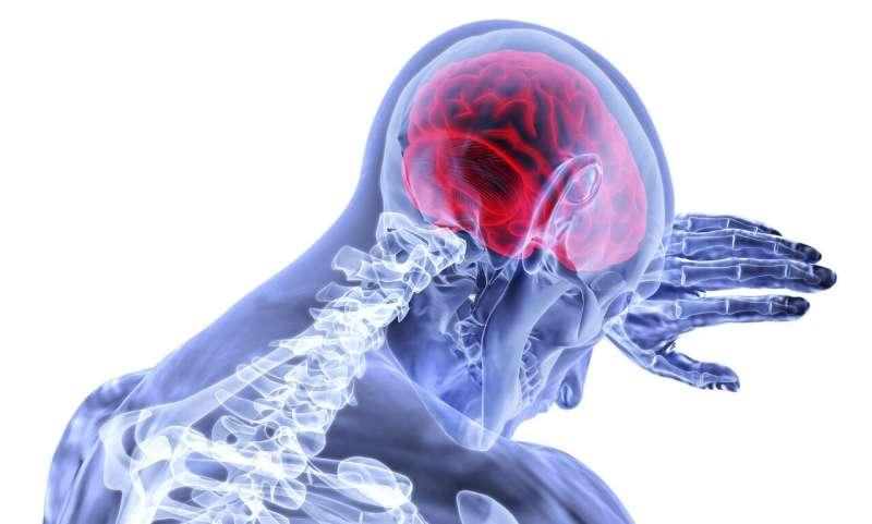 وجد الباحثون مكمِّل يمنع حدوث السكتة الدماغية في المرضى المصابين بأمراض وراثية نادرة